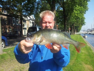 Competitie Streetfishing MidWest Nederland 2017
